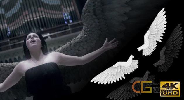 Angel-Wings-Material.jpg